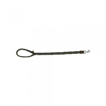 Heavy Duty Dog Leash - dark olive